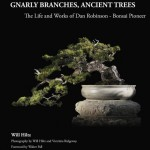 Gnarly Branches, Ancient Trees