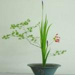 Ikebana, the art of Japanese flower arranging