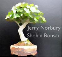 shohin-logo