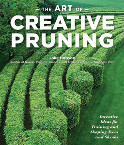 art-creative-pruning
